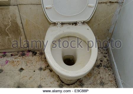 bathroom in england loo dirty filthy toilet stock photo royalty free image