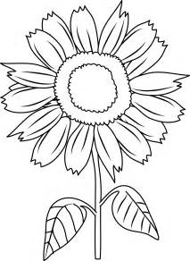 Outline Of Sunflower To Colour by Pretty Sunflower Coloring Page Free Clip