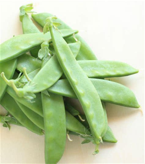 imagenes judias verdes cocina ligera cinco ensaladas un mismo ingrediente