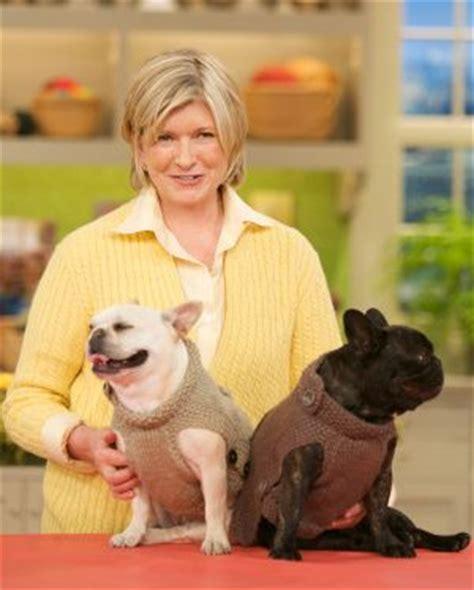 knitting pattern sweater french bulldog martha stewart s french bulldogs sharkey and francesca