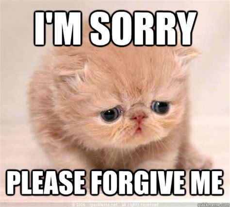 Im Sorry Memes - i m a dick i sorry friends sorry cat quickmeme