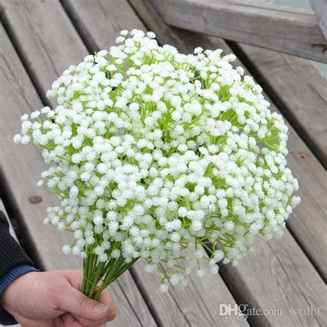 Benih Bunga White Babys Breath 2017 plastics gypsophila 56cm 22 05 length artificial flowers starry gypsophila baby s breath