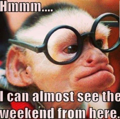 Meme Weekend - meme weekend jacky dahlhaus writer
