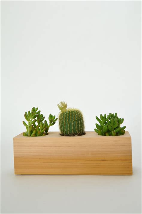 indoor wood planter wood succulent planter contemporary indoor pots and