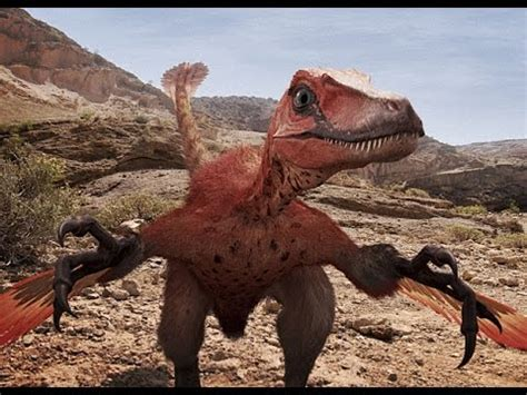 100 dinosaurs 500 subscribers youtube download youtube to mp3 theropod 225 k bolyg 243 ja velociraptor