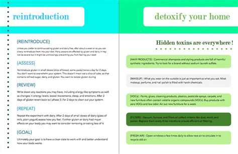 Home Detox Guidelines by Livegreenhealthy Home