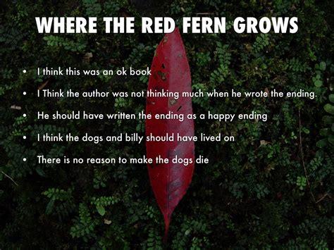 where the fern grows dogs where the fern grows by dominic cortello