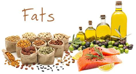 healthy fats nutrients food nutrients 7 essential nutrients to make healthy