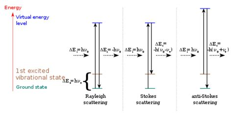 raman scattering cross section raman scattering wikipedia