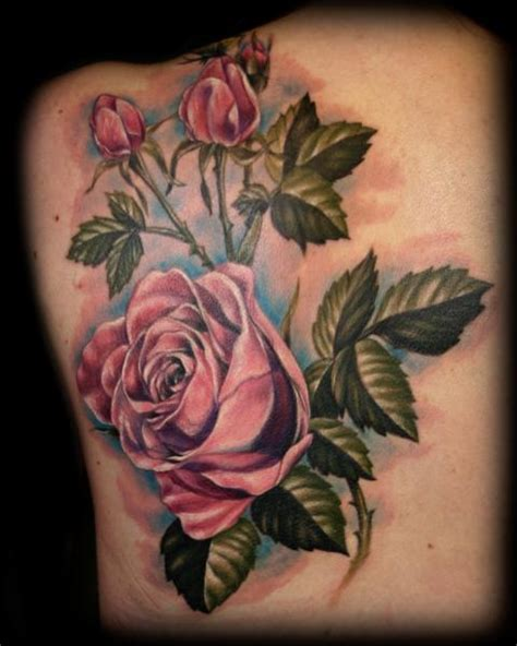 rose tattoo albums big planet community forum jason adkins s album