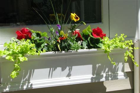 bay window flower box 164 best images about house windows bay windows bump