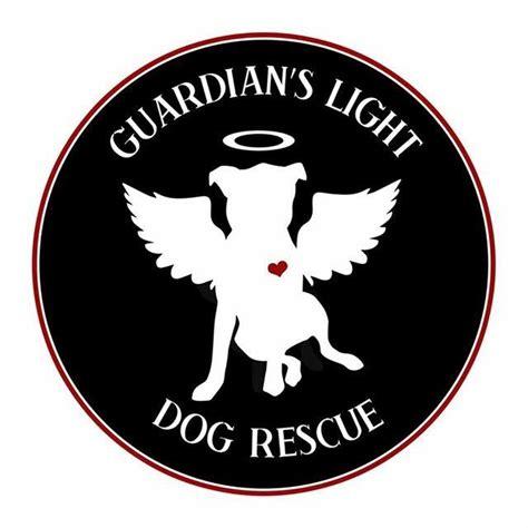 guardians light dog rescue guardian s light dog rescue petfinder com