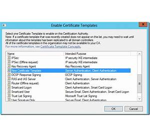 64 certificate template not available web enrollment how to template does not show up in web enrollment pages yelopaper Gallery