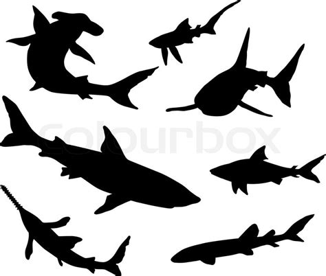 sharks silhouettes stock vector colourbox