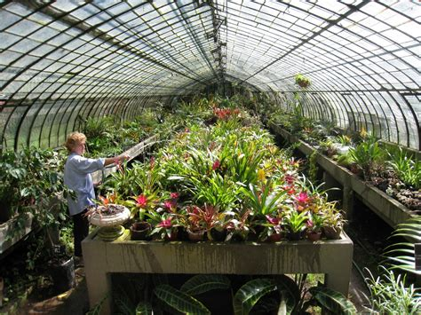 1000 images about greenhouse gardening on