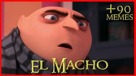 Video Meme - el macho memes de la semana youtube