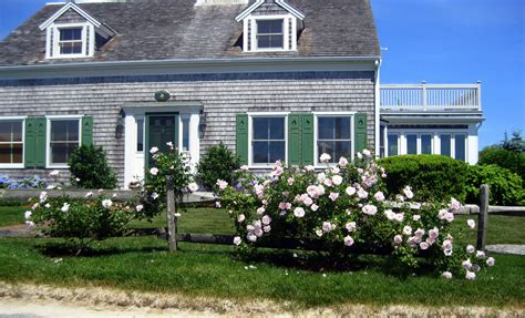 what is a cape cod style house what is a cape cod style house roselawnlutheran