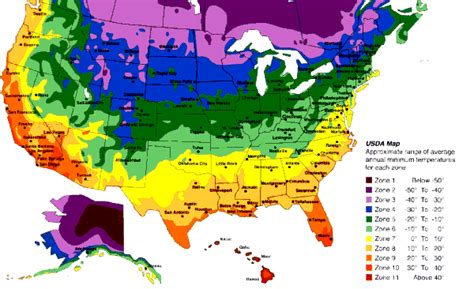 Gardening Zones Usa - your zone and average temperatures the garden patch