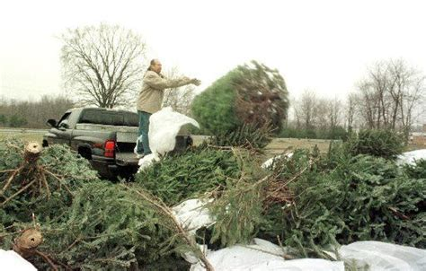 christmas tree recycling collection drop off available