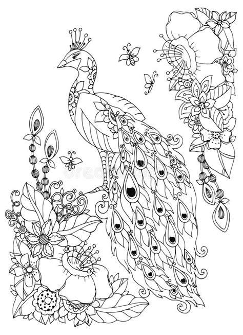 dibujo 233 tnico decorativo del pavo real blanco y negro ejemplo zen tangle del vector pavo real y flores dibujo