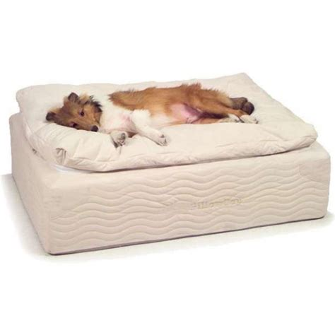 awesome dog beds 36 awesome dog beds for indoors and outdoors digsdigs