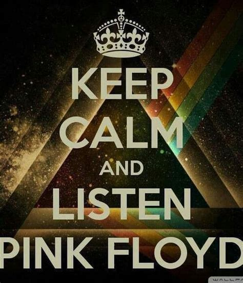 who wrote comfortably numb 232 best images about pink floyd on pinterest pink floyd