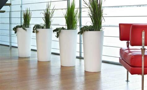 vasi grandi per interni grandi vasi per zona giorno
