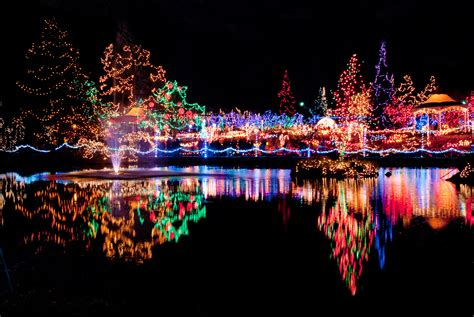 coupons for cincinnati zoo festival of lights 1530x1024px 797 18 kb festival of lights 377281