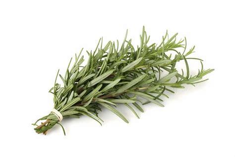 Sho Olive Herbal rosemary olive anacortes vinegar bar shop