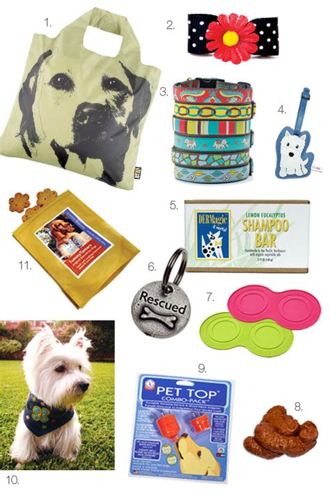 cool things for dogs australian labradoodle shopping modern magazine s cool stuff 20