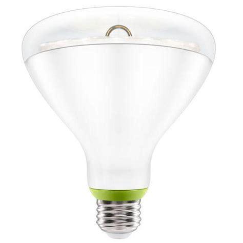 Best Deals On Led Light Bulbs Led Lights Led Lights Best Deals Home Decor