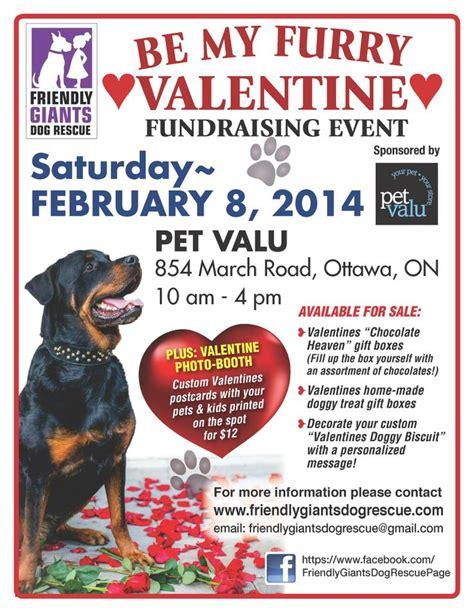 valentines fundraiser 86 best animals in valentines day images on