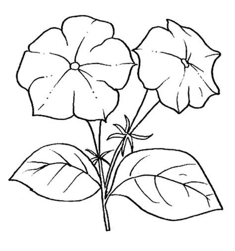 immagini di fiori da disegnare disegni di fiori da colorare foto 2 40 nanopress donna