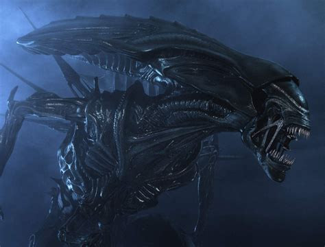 Cameron S Aliens With A Michael Fassbender Let Slip The Name Of The New Xenomorph