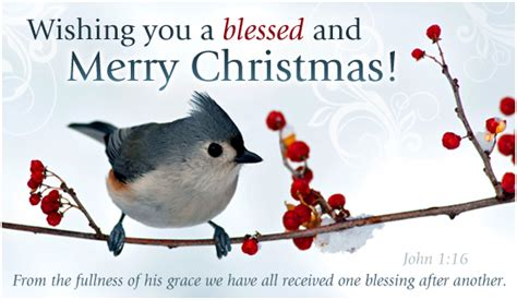 john  ecard email  personalized christmas cards