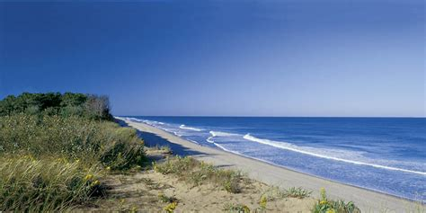 best beaches in cape cod top 10 cape cod beaches bedandbreakfast