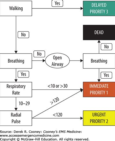 start triage flowchart start triage flowchart create a flowchart
