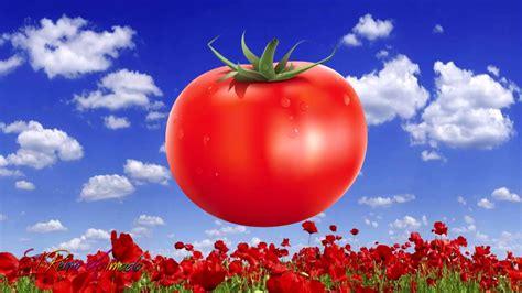 imagenes de otoño rojo el color rojo para ni 241 os cosas de color rojo youtube