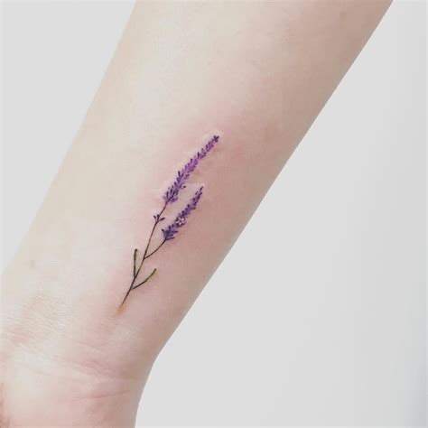 lavendar tattoo image result for lavender modern