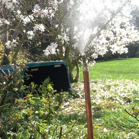 contro le zanzare in giardino sostanze e principi attivi contro le zanzare e insetti