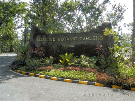 My Botanical Garden My And My Travel Makiling Botanic Garden