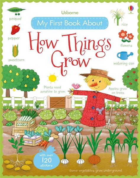 books flowers and things on amazon com marketplace pulse my first book about how things grow at usborne books at home