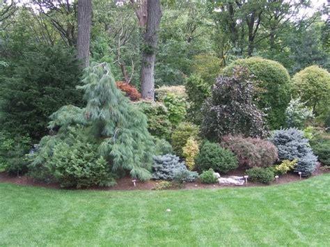 Conifer Garden Ideas Conifer Garden Conifers Shrubs Trees