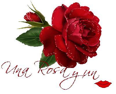 imagenes de rosas con frases de amor imagenes de rosas con movimiento y frases de amor