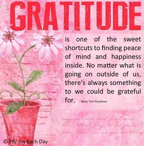 the gratitude journal for find happiness and peace in 5 minutes a day books gratitude quotes and pinspirations