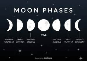 moon phase vector flat moon phases icons download free vector art stock graphics images