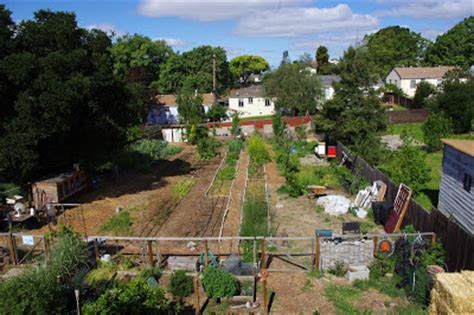 your backyard farmer backyard farming your backyard farm