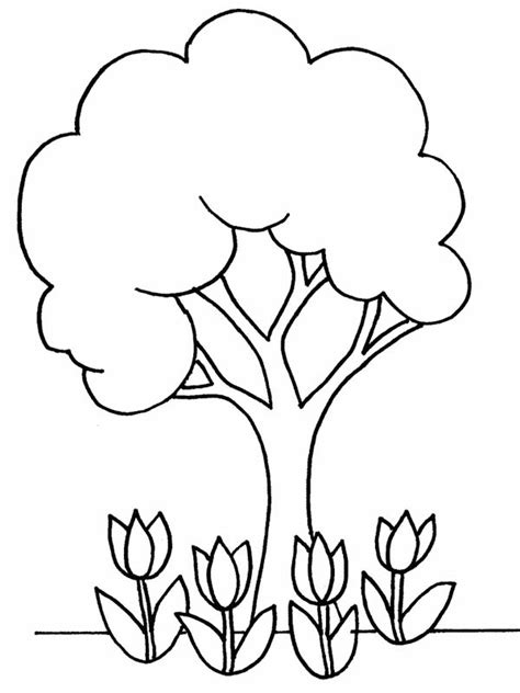 coloring pages of flowers and plants coloring pages trees plants and flowers www