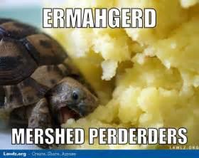 Tortoise Meme - lawlz org 169 2016