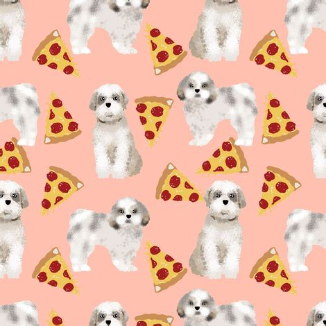 shih tzu original breed shih tzu pizza food breed fabrics breed